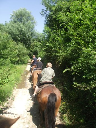 Italy Farm Stay: Horse-Back Riding