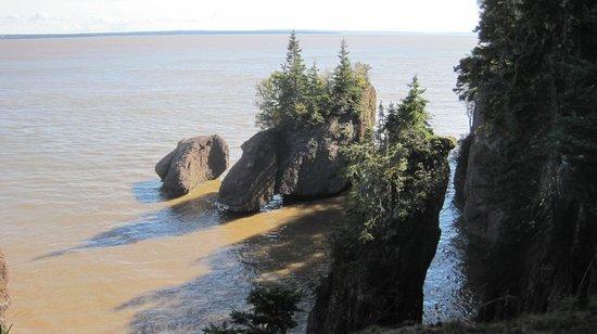 Hopewell Rocks: high tide
