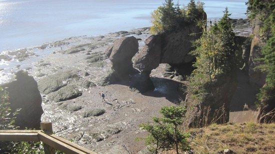Hopewell Rocks: low tide