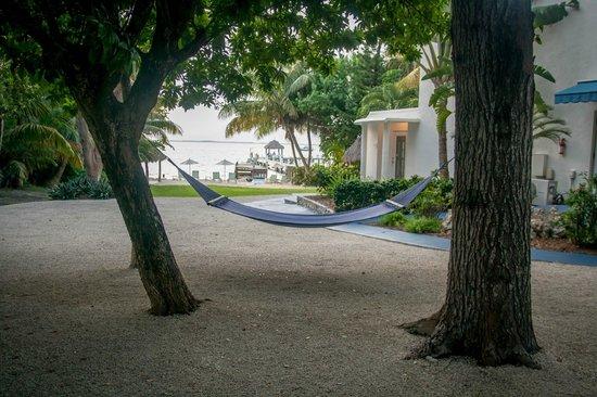 Azul del Mar: The property