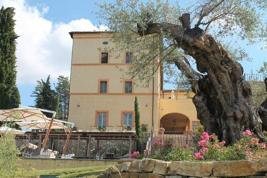 Castello di Casole Private Estate & Spa: Hotel