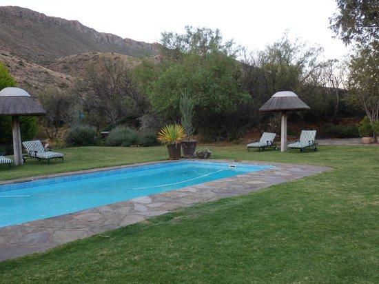 Zwembad in de tuin info over het kopen en het onderhoud