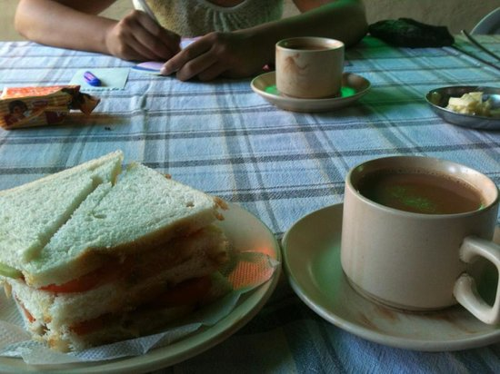 Jungle Lodge : morning chai with veg sandwich