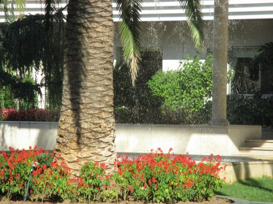 Hotel dos Templarios: The beautiful fountain at the hotel's entrance