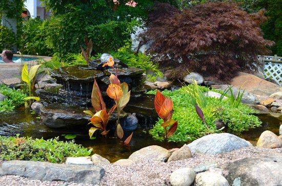 The Villa: Rock garden and waterfall