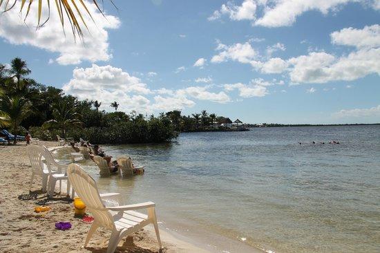 Key Largo Bay Marriott Beach Resort The