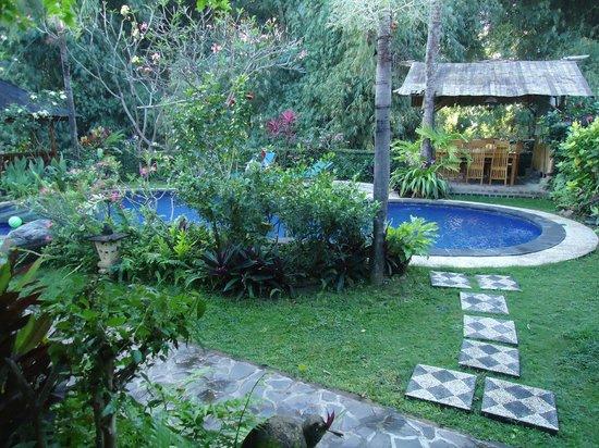 Saraswati Holiday House : la piscine