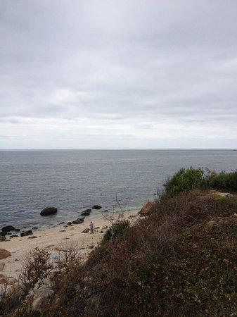 Kontokosta Winery: The view.