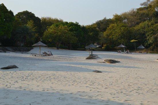 Makuzi Beach Lodge: The lovely beach