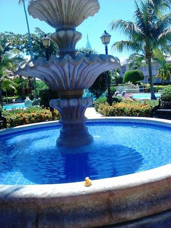 ClubHotel Riu Merengue : ROUND THE POOL