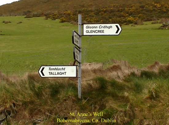 Dublin Mountains: St. Ann's Well, Bohernabreena, Co. Dublin
