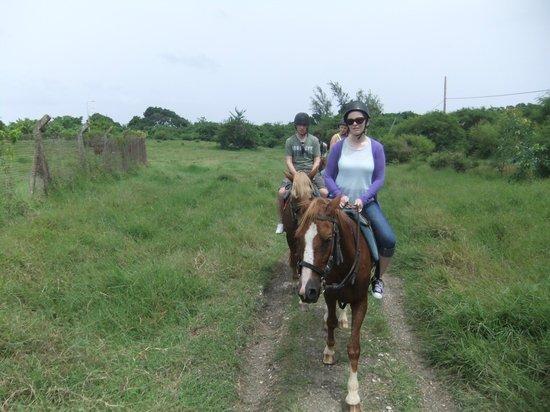 Ocean Echo Stables: Horse riding