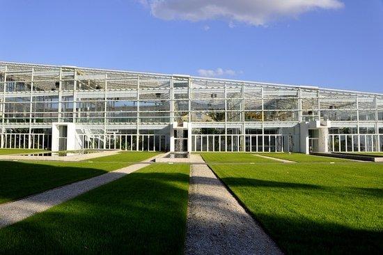 Orto Botanico di Padova: esterno