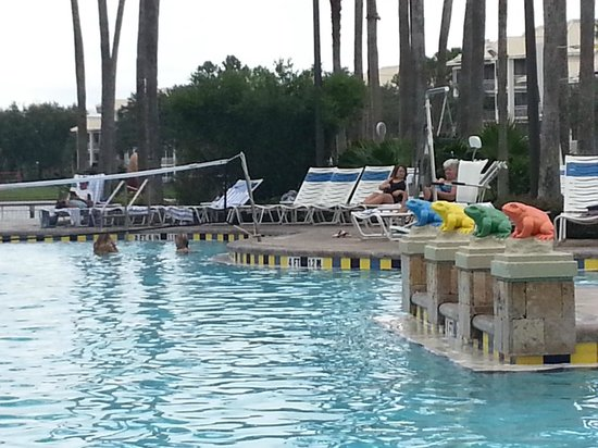 Marriott's Cypress Harbour Villas: Close up of pool.