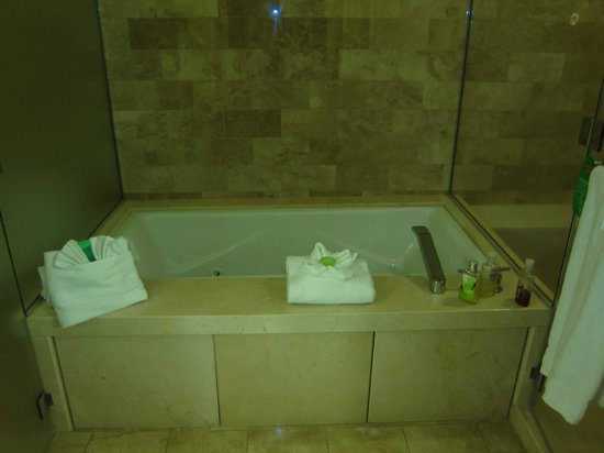 Cabazon, CA: Master Bath, canyon view suite