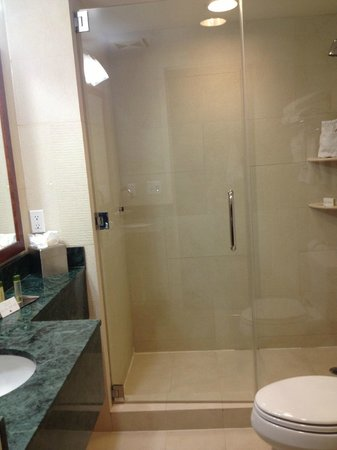 Doubletree By Hilton - Times Square South: bathroom