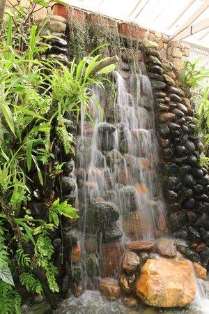 Orchid Garden: A queda d´'água complementa a beleza do lugar