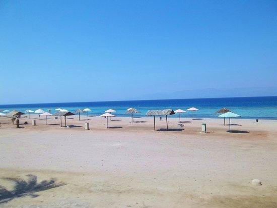 Nice Beach Photo De Aqaba Marine Park Aqaba Tripadvisor