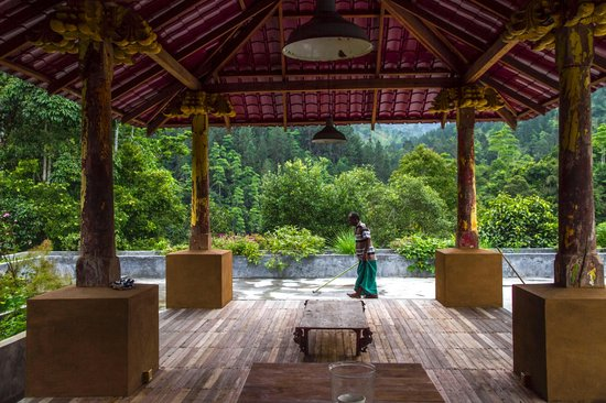 Kandy Samadhi Centre: rooftop relaxation area and herb garden