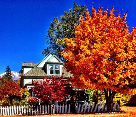 Dream Inn Mount Shasta: Dream Inn Victorian House. 326 Chestnut Mount Shasta, Ca