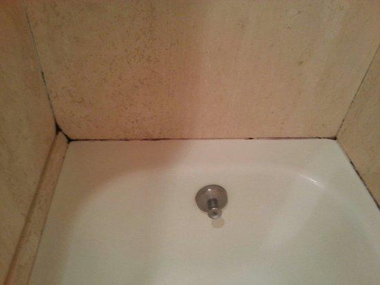 Palace Hotel : Vasca da bagno