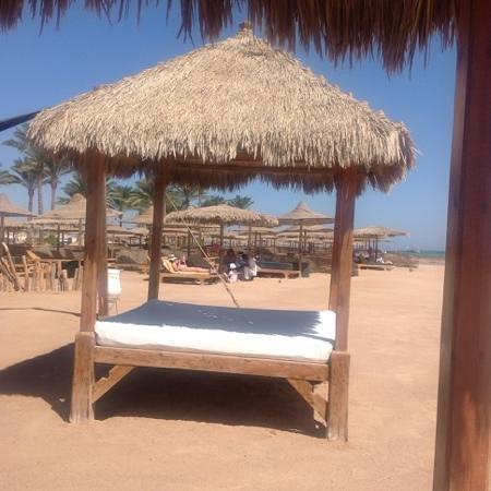 Coral Sea Aqua Club Resort: the beach..