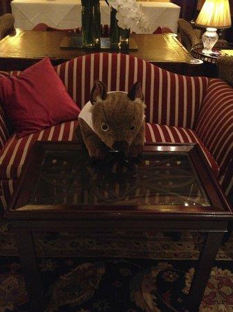Sir Stamford at Circular Quay Hotel Sydney: mascot