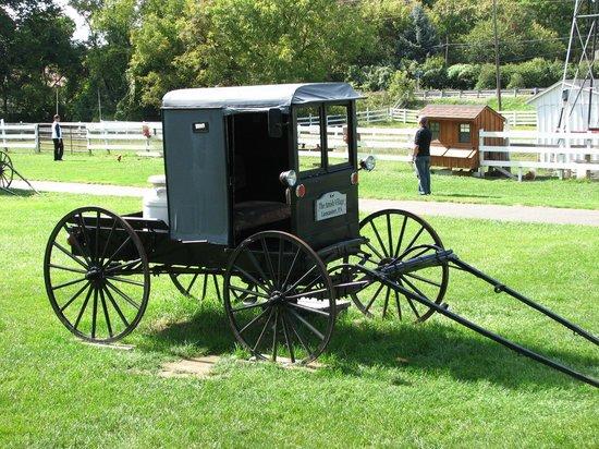 The Amish Village: Amish buggy