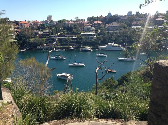 Cremorne Point to Mosman Bay Walk: Shell Cove