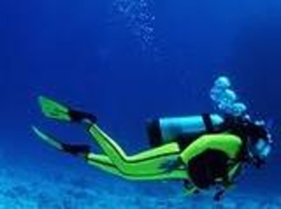 Sharm Solutions Day Tours : Red Sea Diving