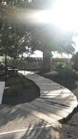Caserio de Mozaga: jardin-1