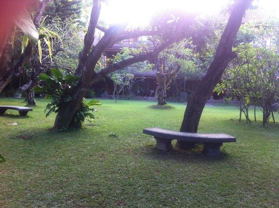 Matahari Bungalow Bar & Restaurant: Hotel grounds