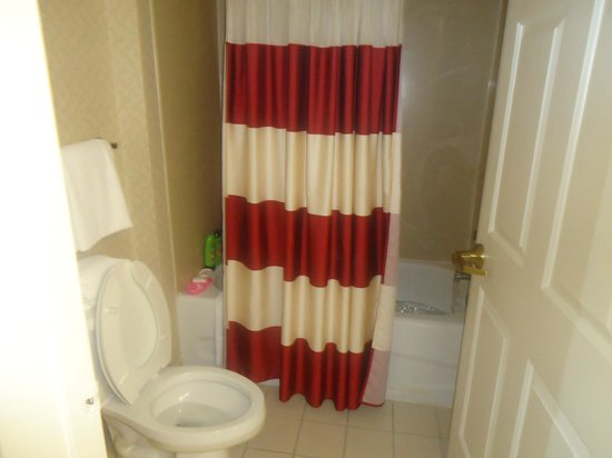 Residence Inn Orlando Convention Center : Banheiro