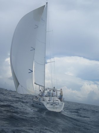 Sempre Sailing Charters: under full sail
