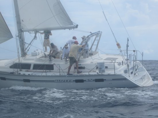 Sempre Sailing Charters: 2000 sq ft of power