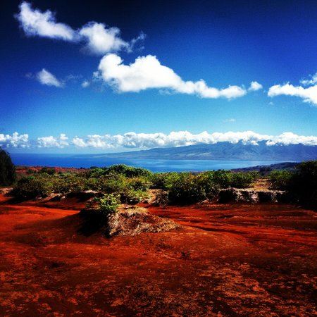 The Stables at Koele: view of Maui from horseback