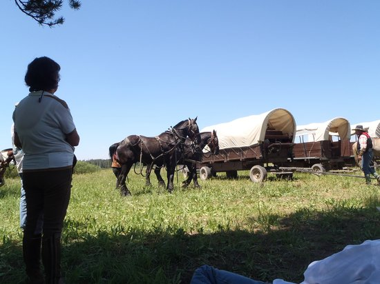 Teton Wagon Train & Horse Adventure: feeling like your realy on your way west,