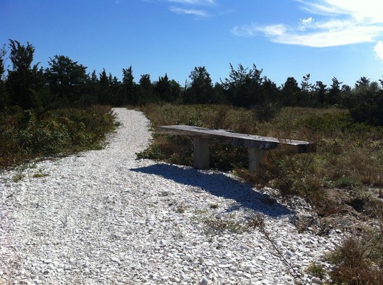 Hostelling International - Martha's Vineyard: The off-road running trail just outside