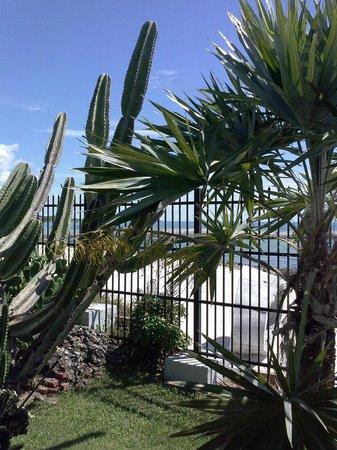 Key West Garden Club: Beautiful