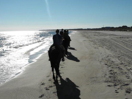 Two-Bit Stable: Horseback riding