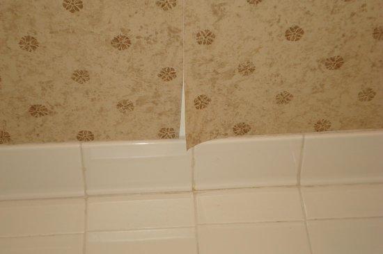 Wingate by Wyndham Alpharetta: torn wallpaper in bath