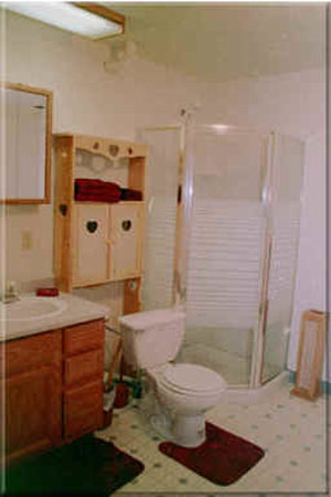 AllSeasons Bed & Breakfast: Bathroom