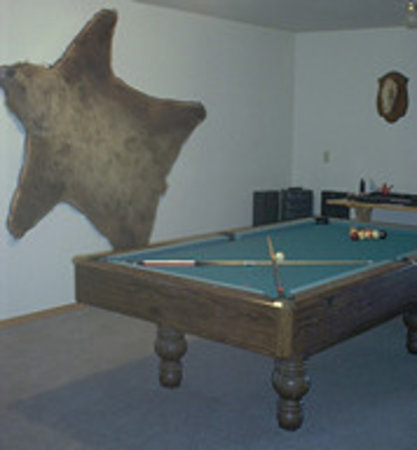 AllSeasons Bed & Breakfast: Pool table area