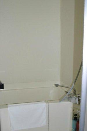 Hotel Abest Kochi: バスルーム