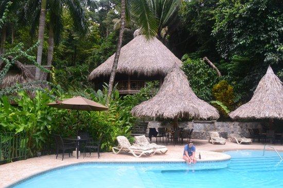Villas Pico Bonito: View of the pool and Le Ceiba Tree