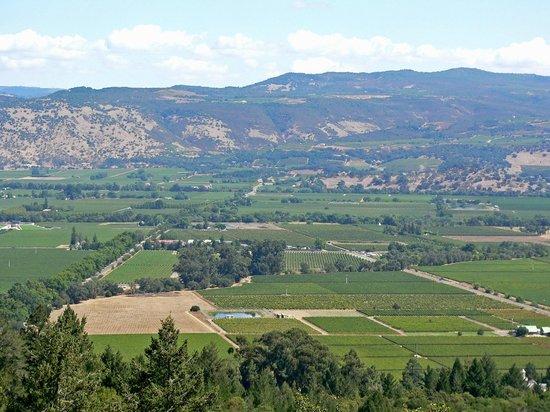 Elite Limo Napa Tours: The Napa Valley