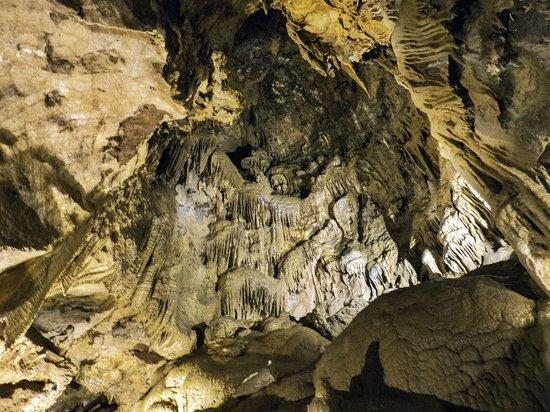 Lake Shasta Caverns: Stala.....thingies