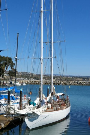 Wind & Sea Restaurant: 1926 Schooner Curlew outside.