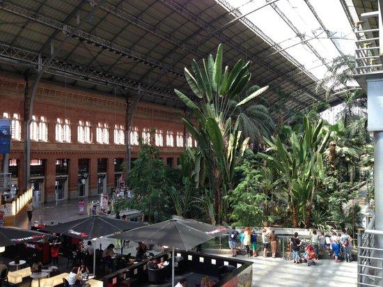 Estacion de Atocha: vista do interior de parte da estção