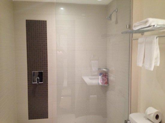 Wyndham Garden San Jose Escazu: Shower